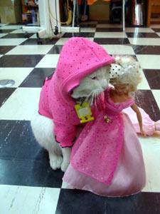 rena-doll.jpg